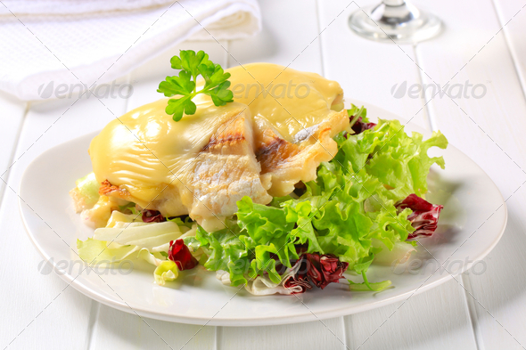 Cheese topped fish fillets with salad - Stock Photo - Images