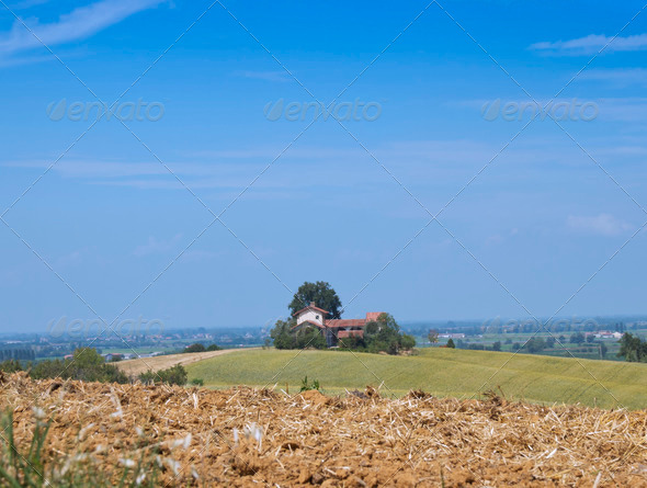 Field - Stock Photo - Images