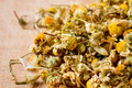dried chamomile flowers - PhotoDune Item for Sale