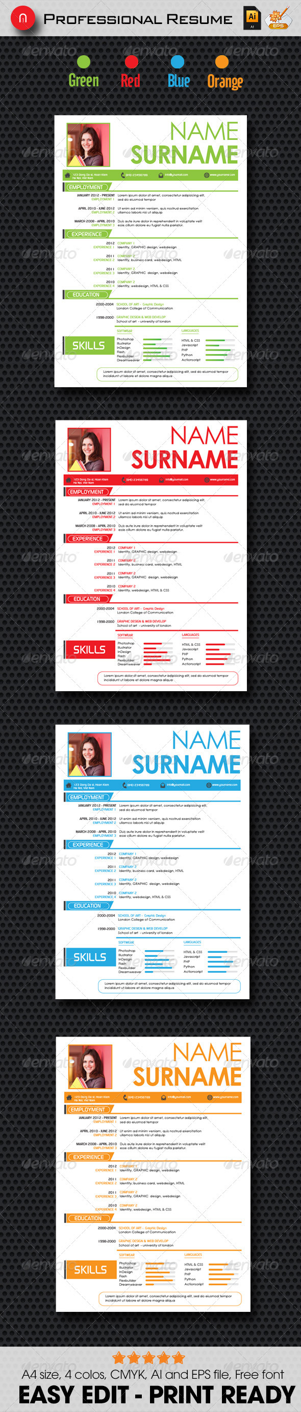 Professinal Resume - Stationery Print Templates