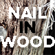 Nail In Wood - VideoHive Item for Sale