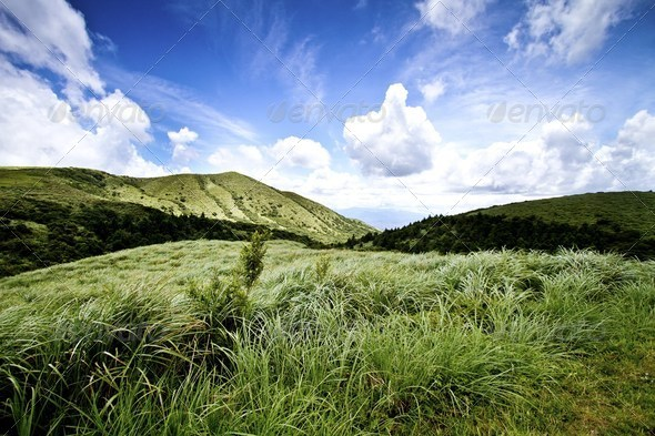 hill - Stock Photo - Images