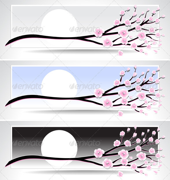 Set banners with flowering branch or cherry blosso - Nature Conceptual