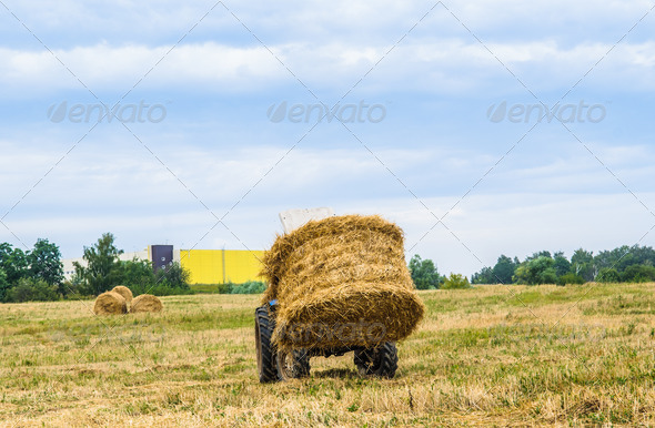 tractor with a hay - Stock Photo - Images