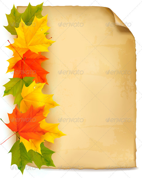 Autumn background with color leaves and old paper. - Seasons Nature