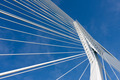 Detail of the cable stayed Erasmus bridge in Rotterdam,  the Net - PhotoDune Item for Sale