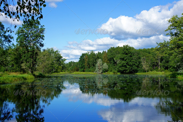 Landscape with lake - Stock Photo - Images