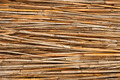 Detail of reed fence - PhotoDune Item for Sale