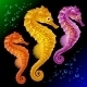 Vector Seahorses - GraphicRiver Item for Sale