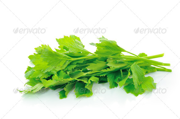 Celery on white background - Stock Photo - Images