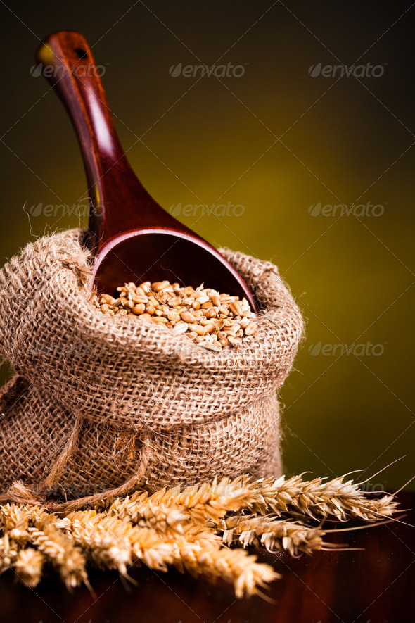 Wheat in burlap sack - Stock Photo - Images