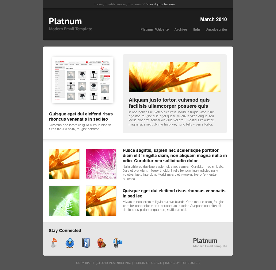 Platnum Email Template, 6 Layouts, 8 Colors - Dark Theme - Layout 4