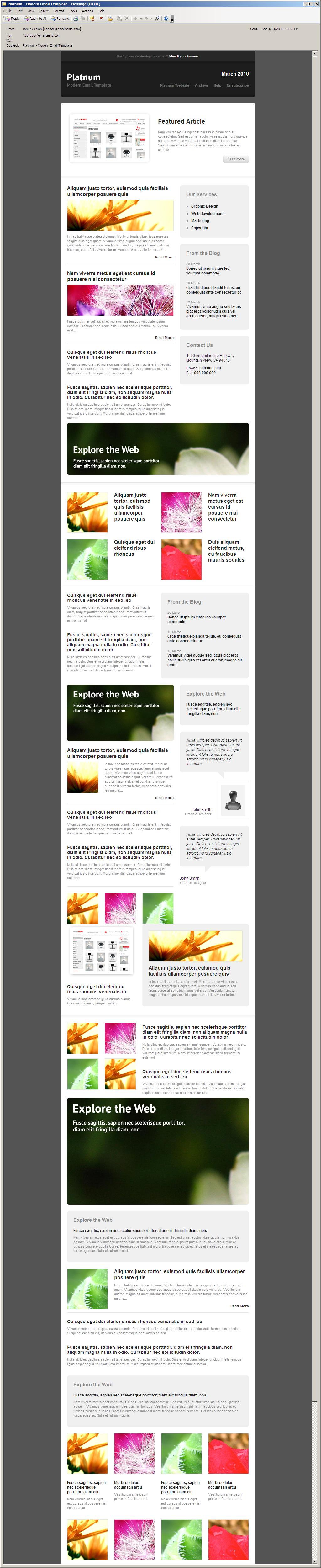 Platnum Email Template, 6 Layouts, 8 Colors - Outlook 2003 - All elements listed.