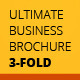 Ultimate Business 3-fold Brochure InDesign - GraphicRiver Item for Sale