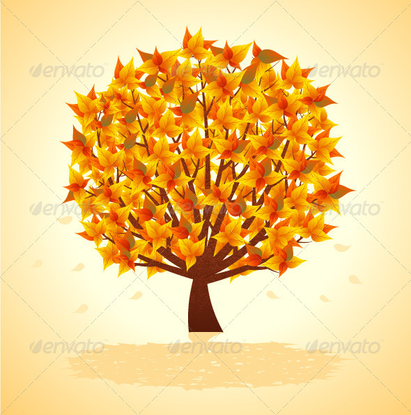 Autumn Tree - Seasons Nature