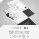Brochure Tri-Fold Bundle #1 - GraphicRiver Item for Sale