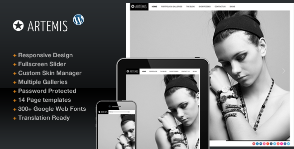 Artemis wordpress theme download