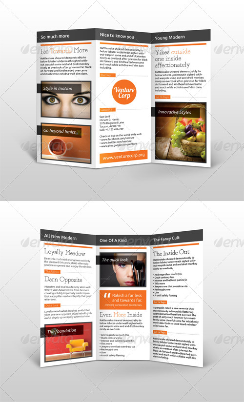 Multi-Purpose Trifold Brochure #1