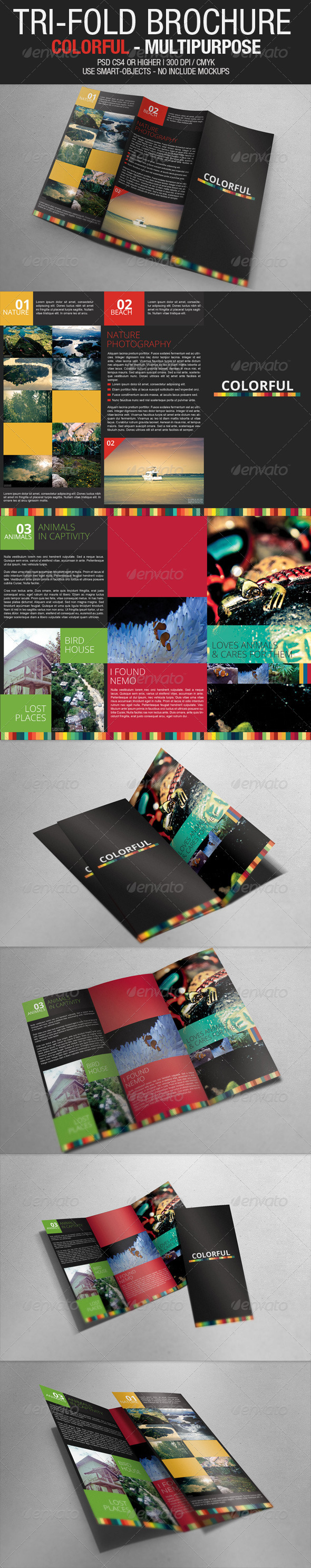GraphicRiver Tri Fold Brochure Colorful Multipurpose 2919517
