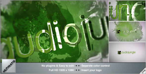 VideoHive Ink Logo 2926058