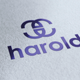 Harold Logo - GraphicRiver Item for Sale