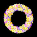 Multicolored daisy wreath on black - PhotoDune Item for Sale