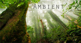 Ambient, Chill, Ethno, Lounge music
