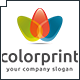 Color Print Logo - GraphicRiver Item for Sale