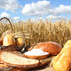 Bread and Grain - PhotoDune Item for Sale
