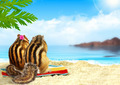 chipmunks on the beach, honeymoon concept - PhotoDune Item for Sale