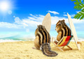 chipmunks serfers on the beach with surf boards - PhotoDune Item for Sale