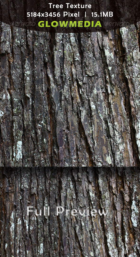 Tree Texture - Bark - Wood Textures