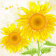 Floral Background with Sunflower - GraphicRiver Item for Sale