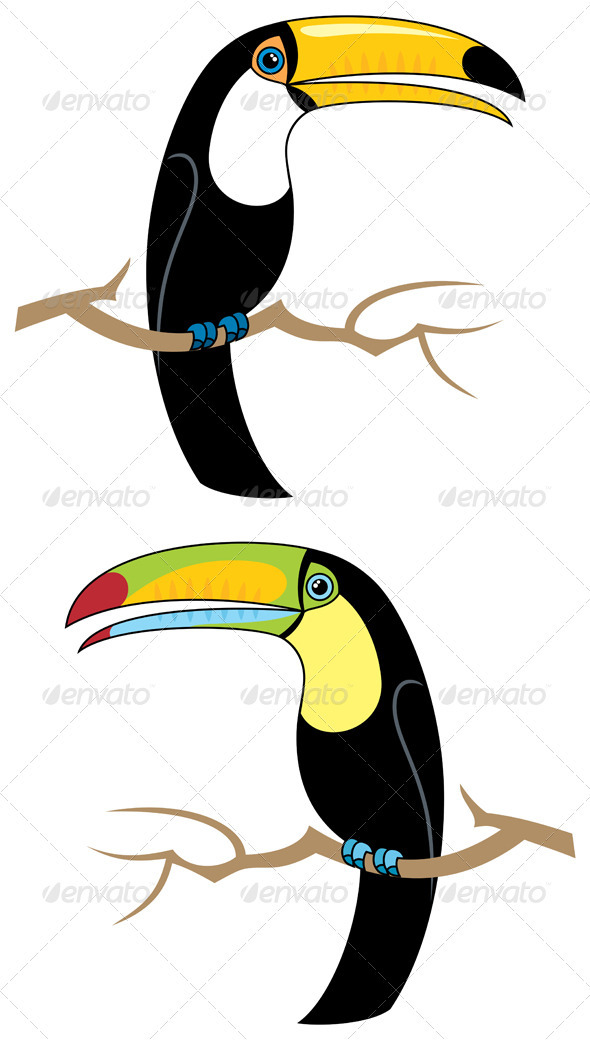 Toucans - Animals Characters