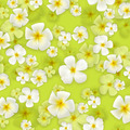 Floral background - PhotoDune Item for Sale