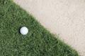 Golf ball on green - PhotoDune Item for Sale