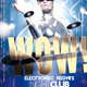 Wow Party Flyer - GraphicRiver Item for Sale