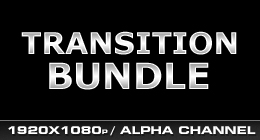 Transition Bundle