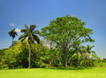 Cuban countryside landscape - PhotoDune Item for Sale
