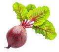 Beetroot - PhotoDune Item for Sale