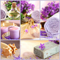 Collage violet spa - PhotoDune Item for Sale