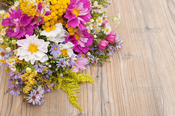 Wild Summer Flowers - Stock Photo - Images