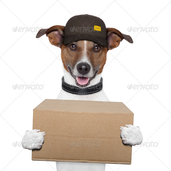 PhotoDune dog delivery post 3056804
