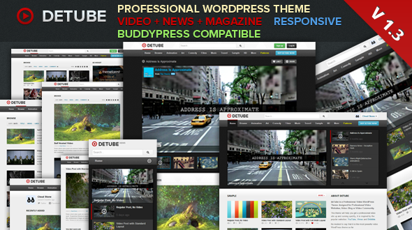 ThemeForest deTube Professional Video WordPress Theme 2664497