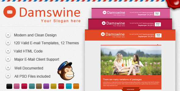 Damswine E-mail Template - Email Templates Marketing