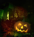 Halloween pumpkin in spooky cemetery - PhotoDune Item for Sale