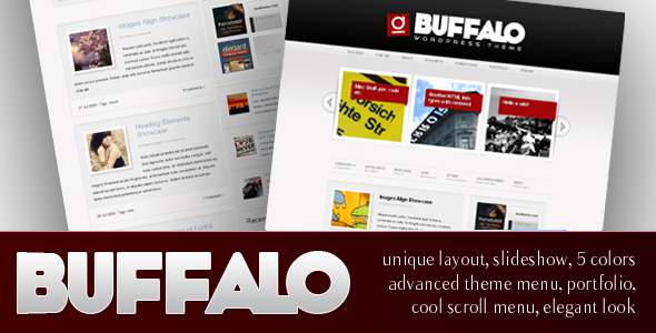Buffalo - Unique WordPress Theme (5 in 1) - Promo image of Buffalo theme.