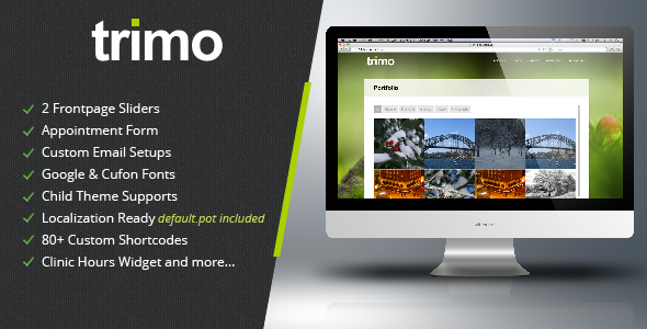 Trimo One Page Wordpress Theme - Portfolio Creative