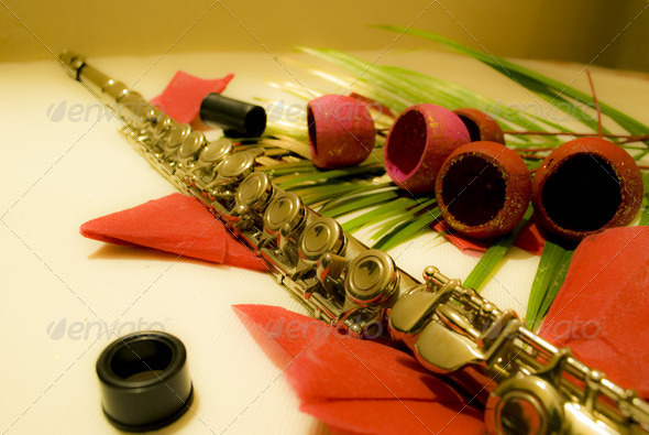Flute - Stock Photo - Images