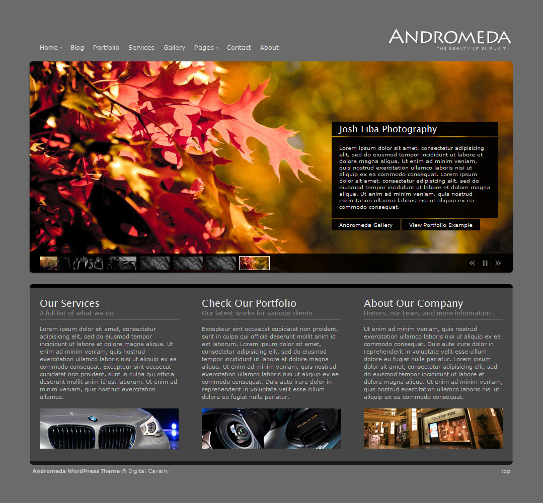 Andromeda WordPress - The Beauty of Simplicity